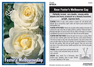 Picture of ROSE FOSTERS MELBOURNE CUP (HT)