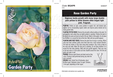 Picture of ROSE GARDEN PARTY (HT)