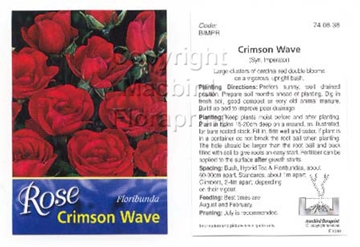 Picture of ROSE CRIMSON WAVE SYN IMPERATOR (FL)