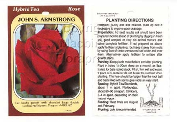 Picture of ROSE JOHN S ARMSTRONG (HT)