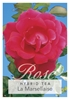 Picture of ROSE LA MARSELLAISE (HT)