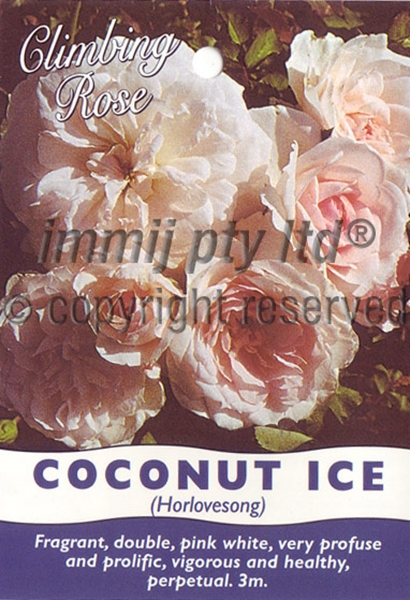 Picture of ROSE COCONUT ICE (CL)
