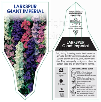 Picture of ANNUAL LARKSPUR GIANT IMPERIAL