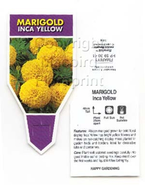 Picture of ANNUAL MARIGOLD INCA YELLOW (Tagetes erecta)