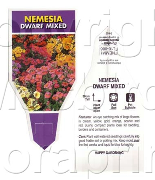 Picture of ANNUAL NEMESIA DWARF MIXED
