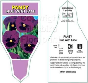 Picture of ANNUAL PANSY BLUE WITH FACE (Viola x wittrockiana)