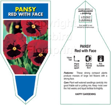Picture of ANNUAL PANSY RED WITH FACE (Viola x wittrockiana)