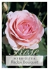 Picture of ROSE RADOX BOUQUET (HT)