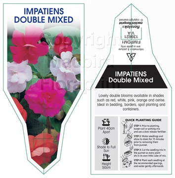 Picture of ANNUAL IMPATIENS DOUBLE MIXED (Impatiens wallerana)
