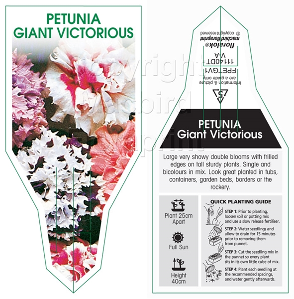 Picture of ANNUAL PETUNIA GIANT VICTORIOUS MIX (Petunia x hybrida)