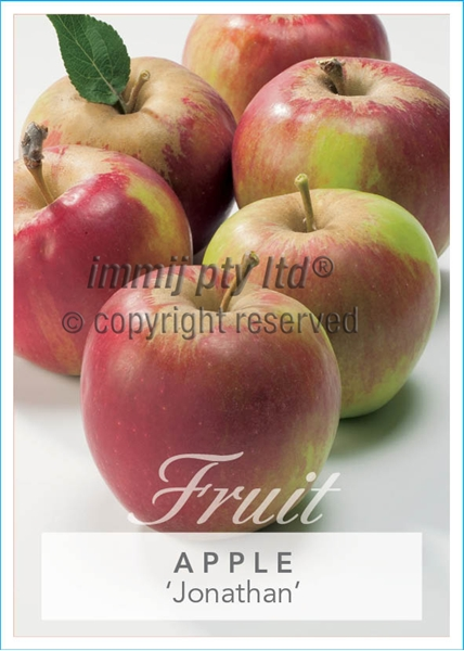 Picture of **FRUIT APPLE JONATHAN