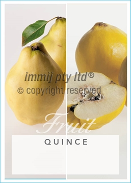 Picture of **FRUIT QUINCE (UNNAMED VARIETY)