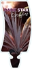 Picture of **CORDYLINE DARK STAR