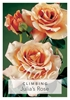 Picture of **ROSE JULIAS ROSE (CL)