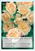 Picture of ROSE APRICOT CREAM (UNNAMED VARIETY TICK BOX)