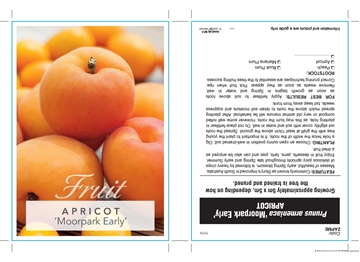 Picture of **FRUIT APRICOT MOORPARK EARLY Jumbo Tag
