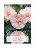 Picture of **CAMELLIA JEAN MAY