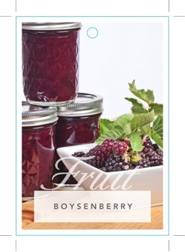 Picture of **FRUIT BOYSENBERRY