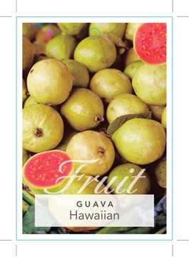 Picture of FRUIT GUAVA HAWAIIAN