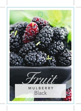 Picture of FRUIT MULBERRY BLACK