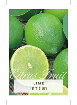 Picture of FRUIT LIME TAHITIAN