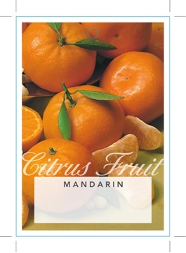 Picture of FRUIT MANDARIN (UNNAMED VARIETY)