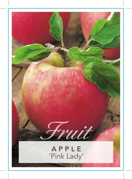 Picture of FRUIT APPLE PINK LADY