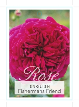 Picture of ROSE FISHERMANS FRIEND (ER)